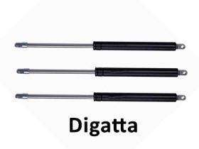 Digata