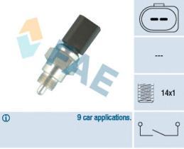 FAE 40676 - Interruptor