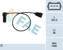 FAE 79066 -